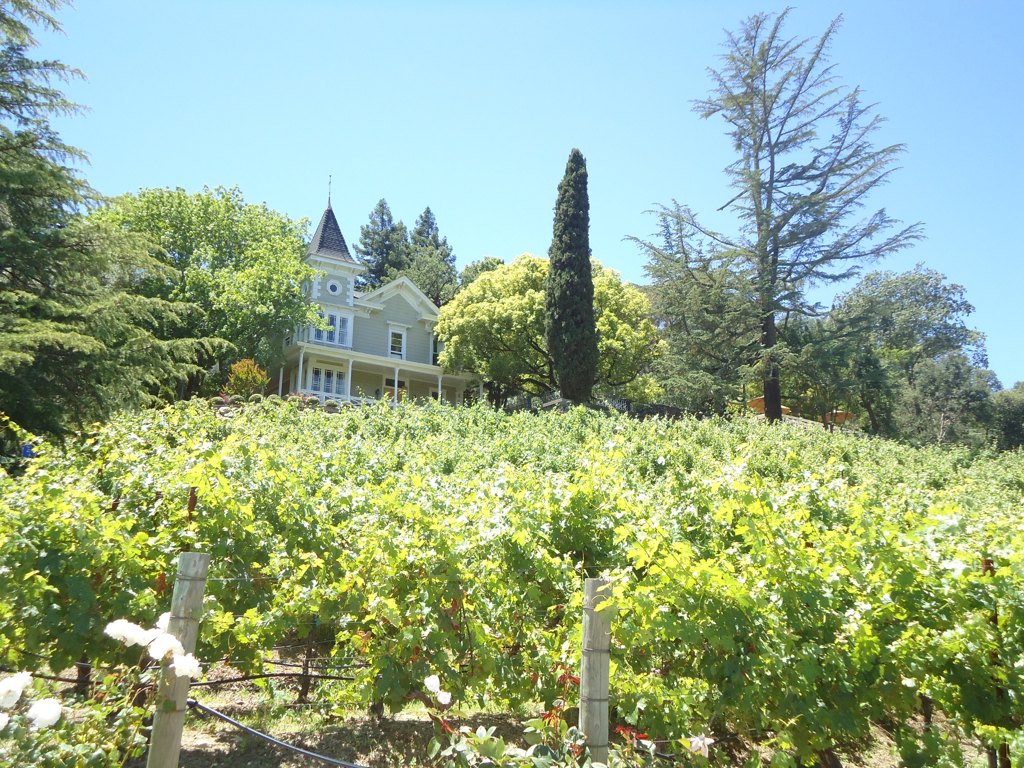 St Clement, Napa Valley