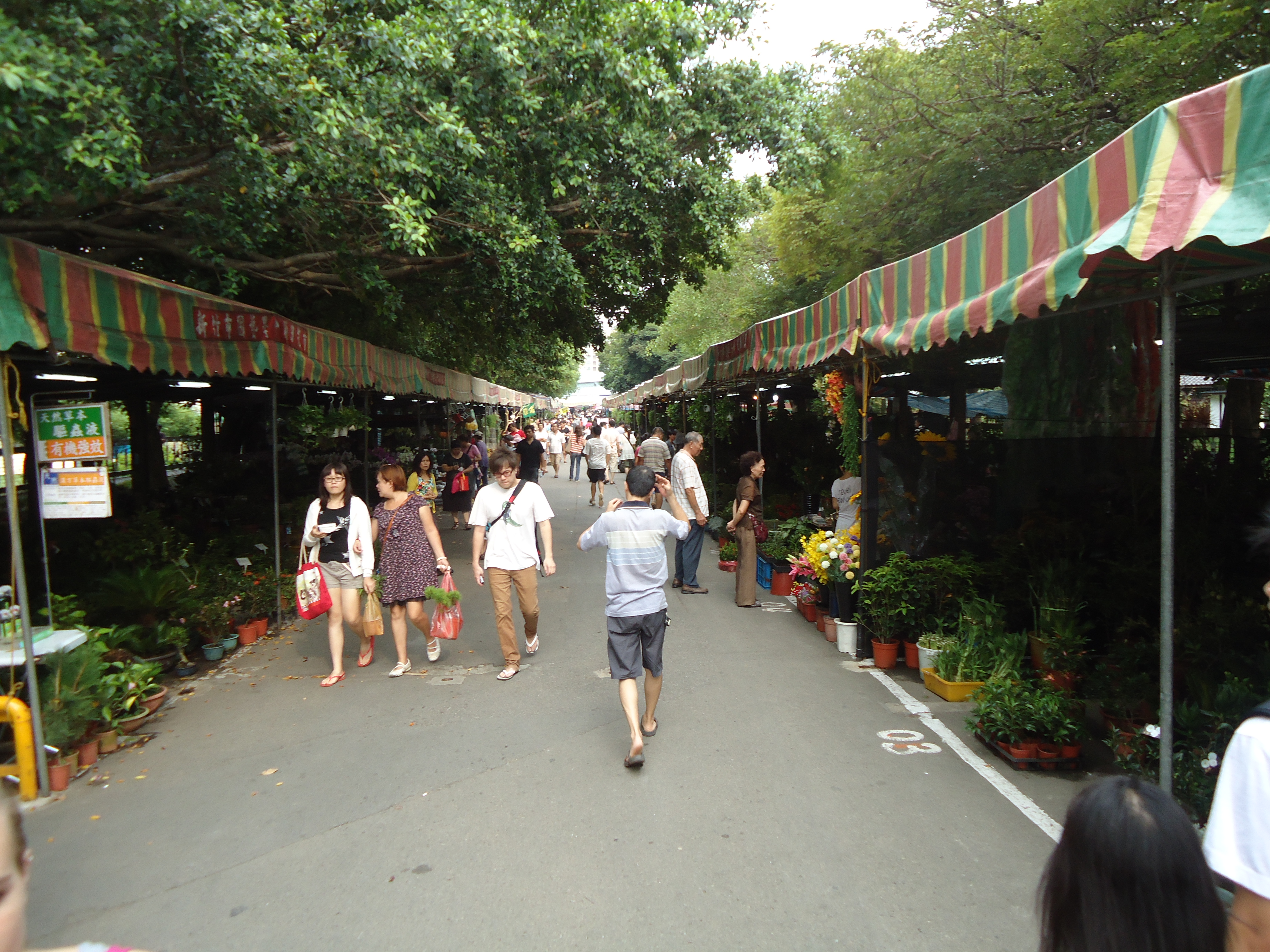 Hsinchu Flower Market Exploration